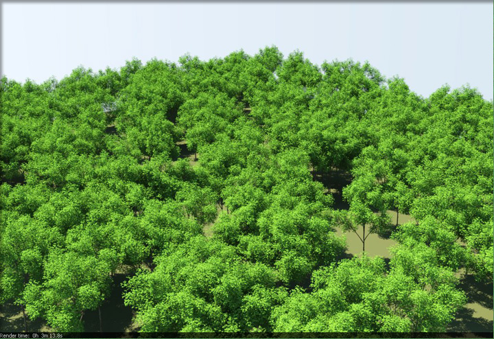 Vray Proxy Trees Free Download